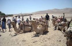 bar_mitzvah_tour_camals_2