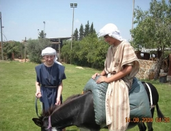 israel_family_tours
