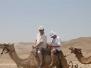Bedouin Experience